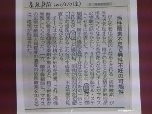 2013.06、男性不妊と活性酸素